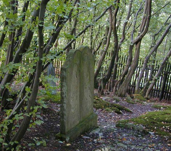 Jüdischer Waldfriedhof