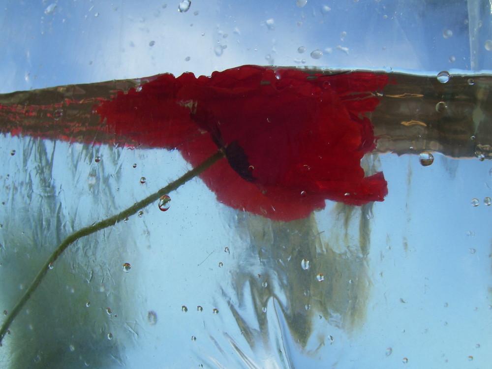 Jugando con el agua...FERNANDO LÓPEZ   fOTOGRAFÍAS...