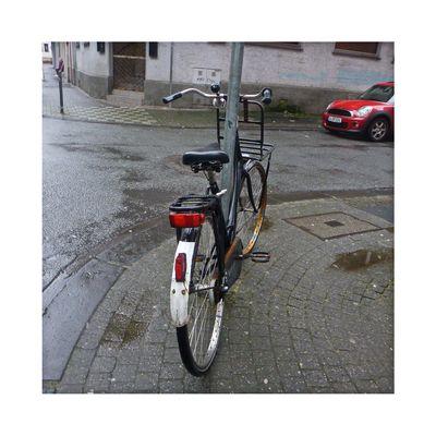 Julia's Bicycle