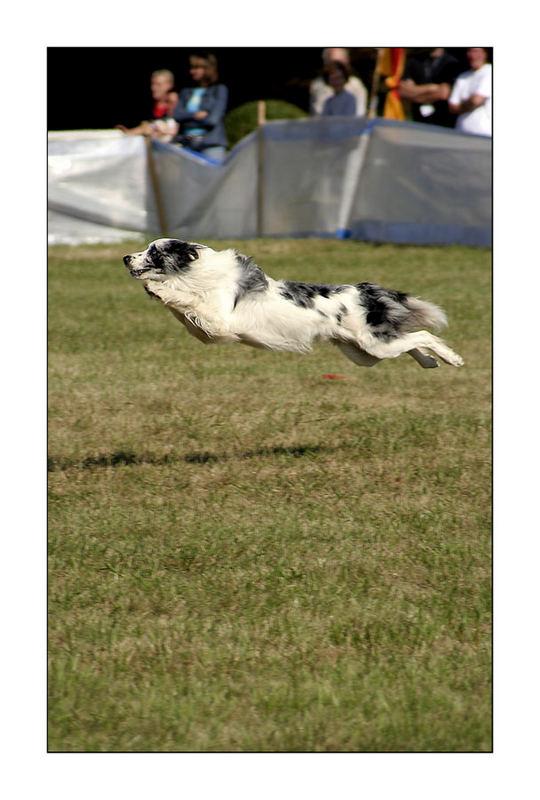 ...jump...