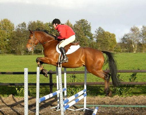 Jumping Janny