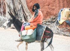 Junge auf Esel maroc