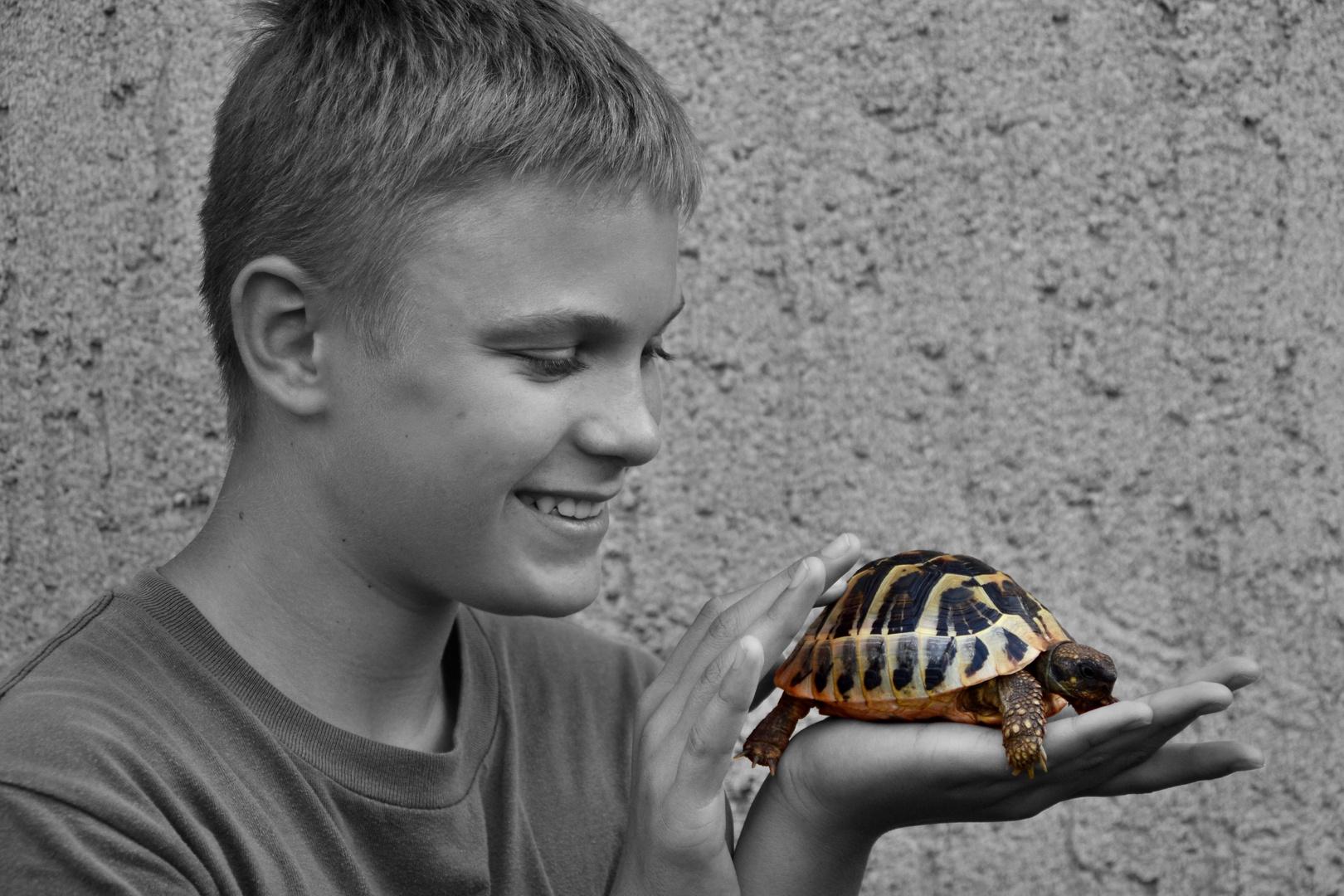 Junge mit Schildkröte