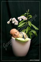 Junges Gemüse :)