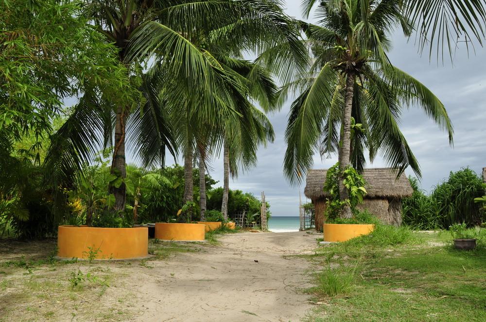 Jungle Beach VN