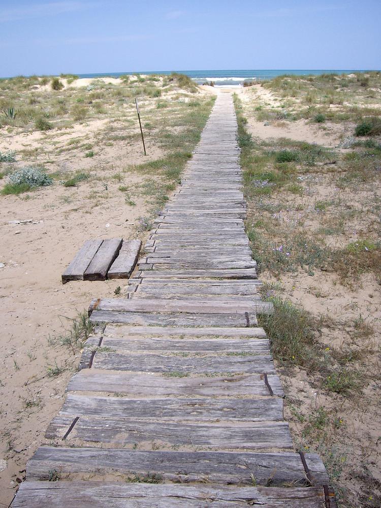 Juni 2006 am Strand