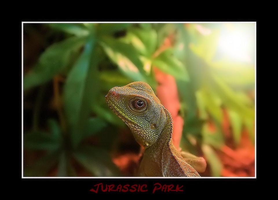 Jurassic Park re-reload