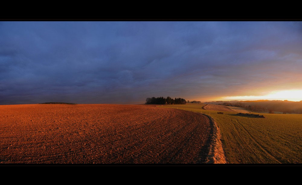 just a field   01