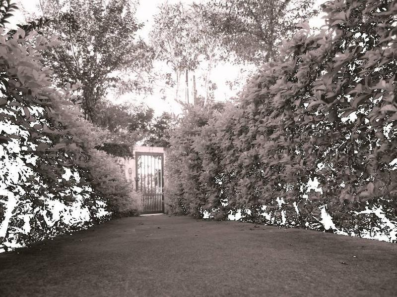 just a gate...
