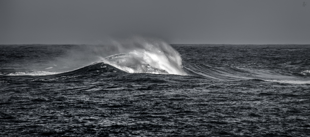 just a wave