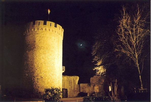Just another castle at night .... (2)