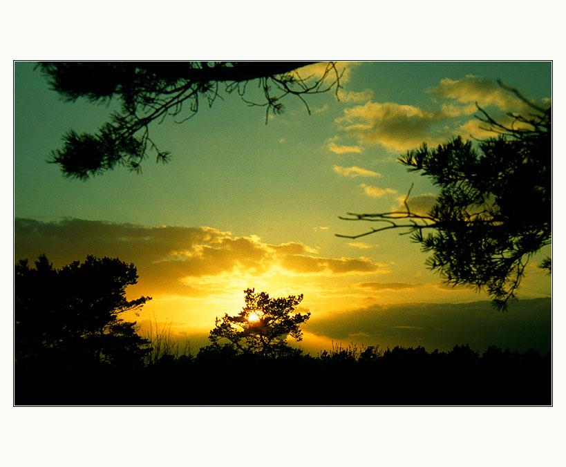 ° just another sundown °°