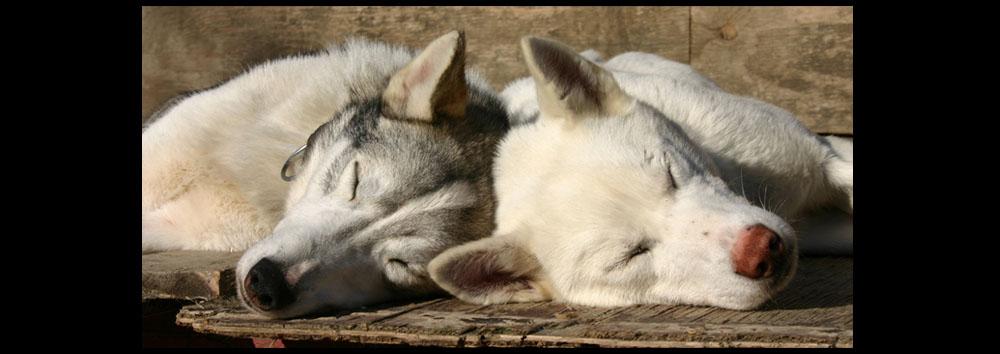 ...just friends...