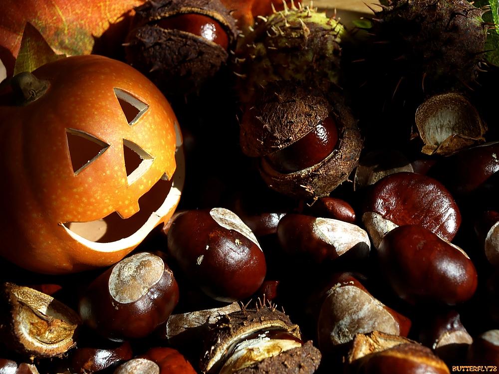 K-K-H - Kürbis+Kastanien=Herbst