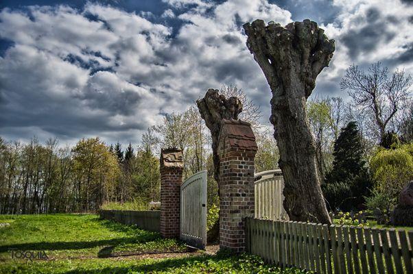 Kadettenfriedhof