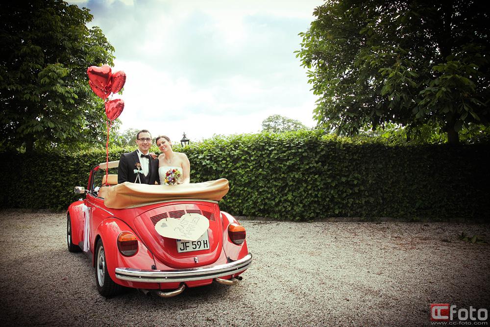 Käfer Hochzeit