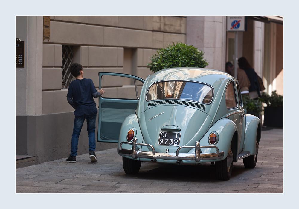 Käfer in Modena