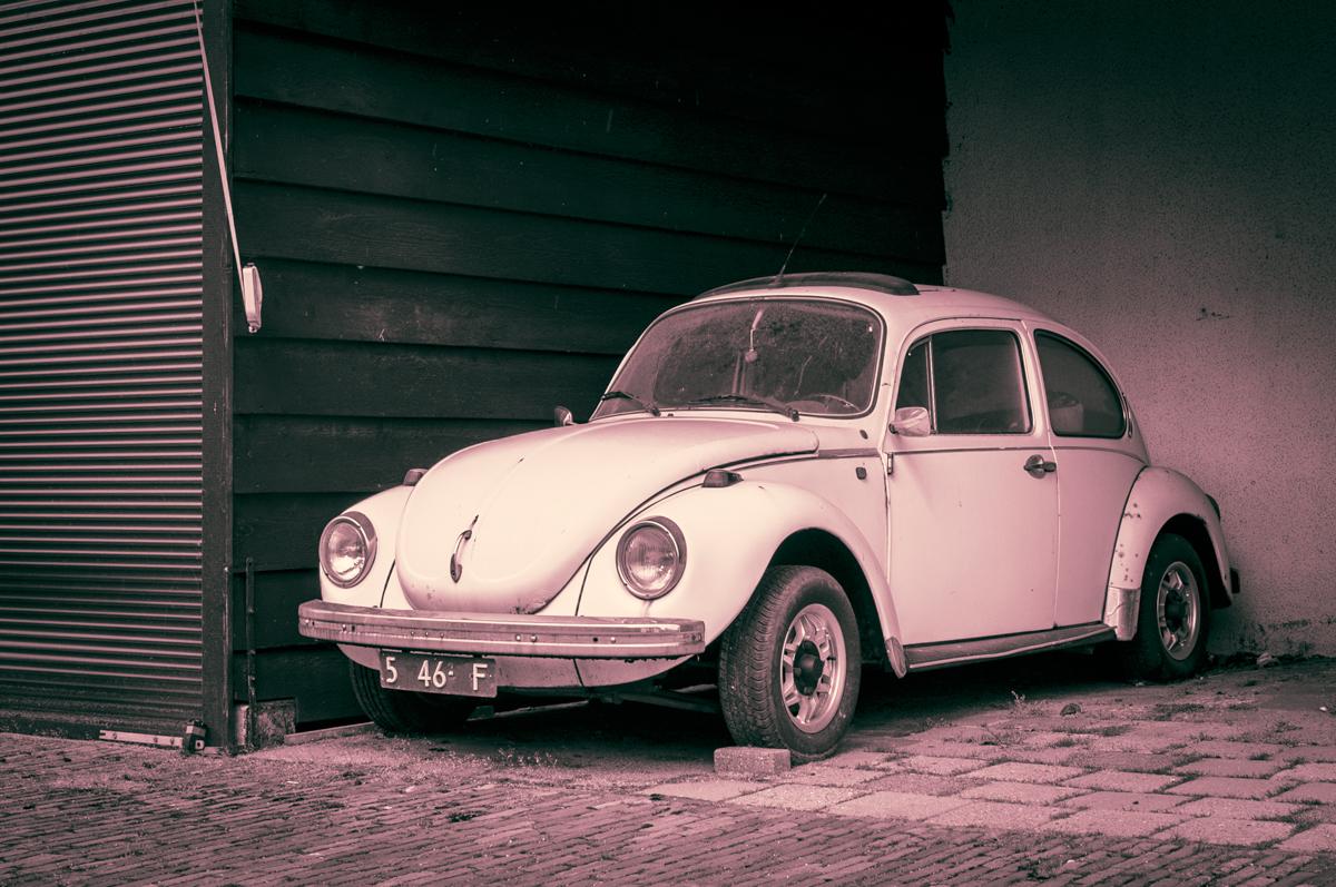 Käfer-Makro