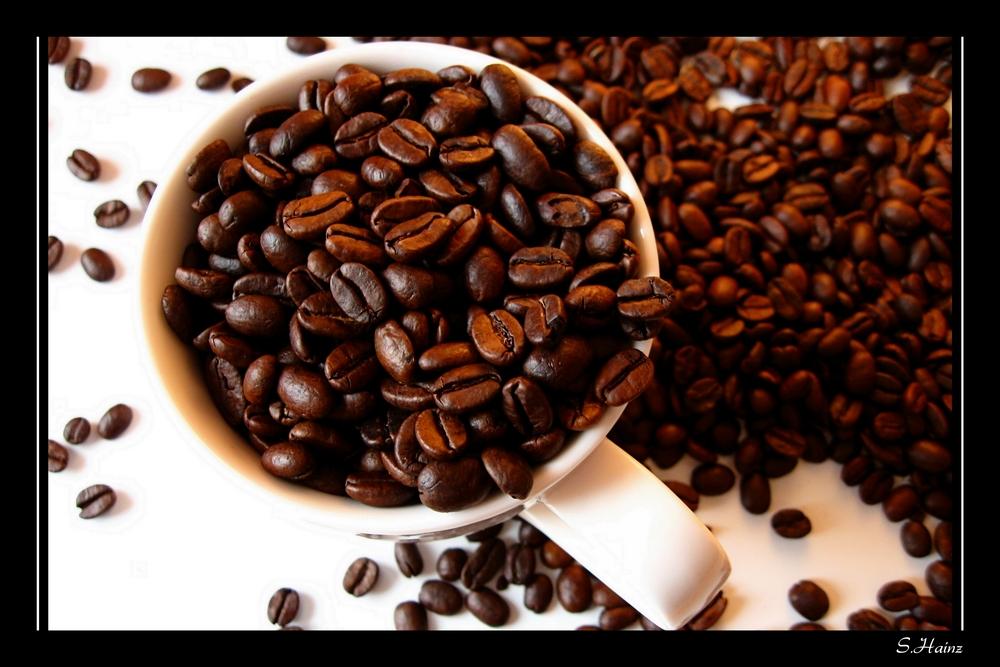 Kaffee, bitte!