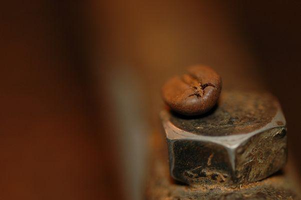 Kaffeebohne in Szene 3 :)