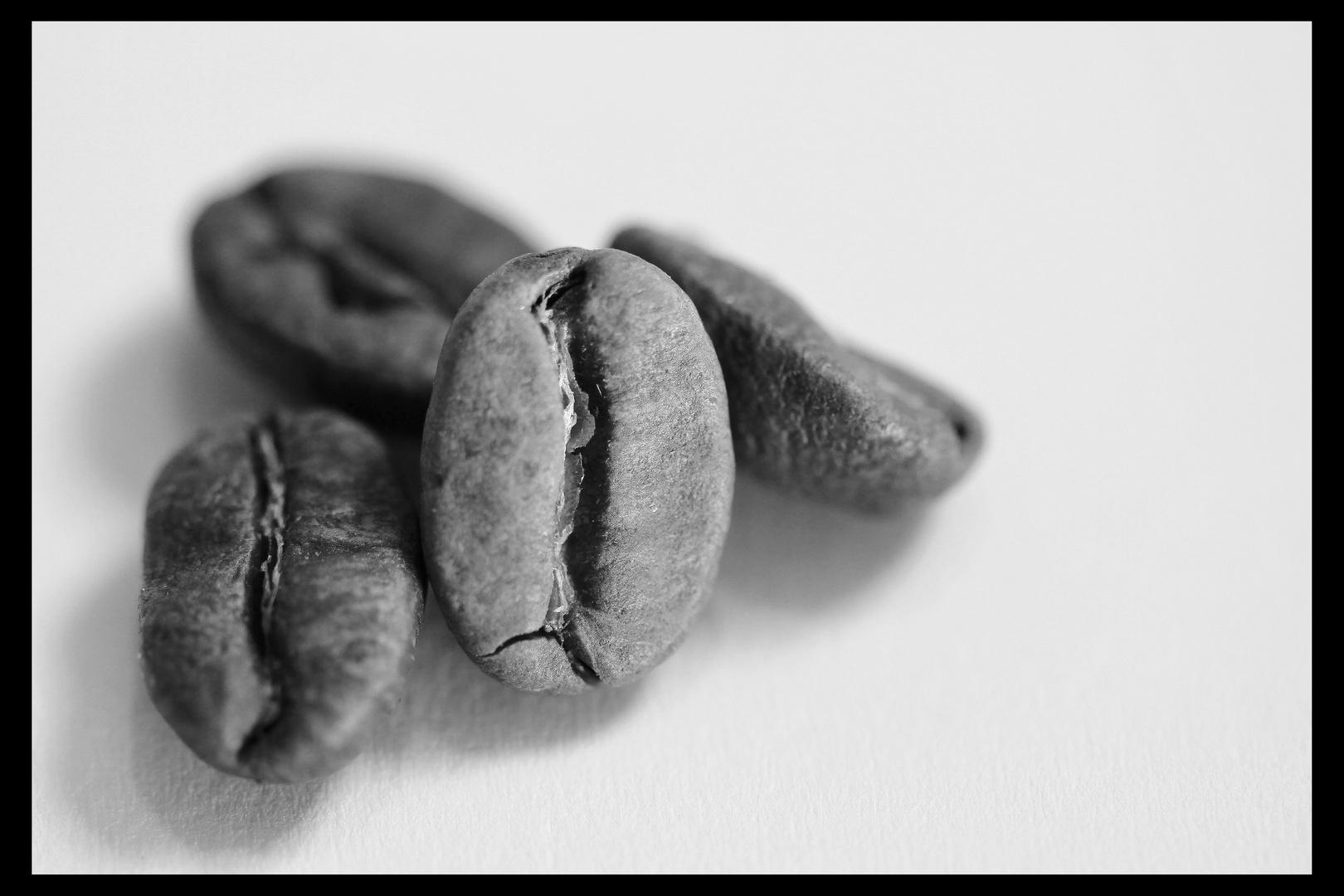 Kaffeebohnen in schwarz & weiß