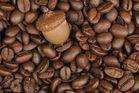 Kaffeebohnen mit Fremdkörper