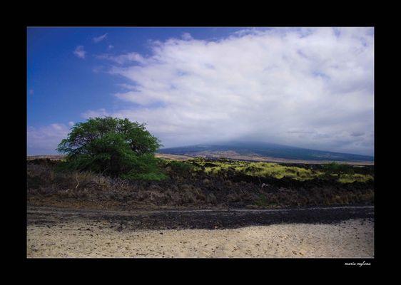 Kailua Kona Beach ~