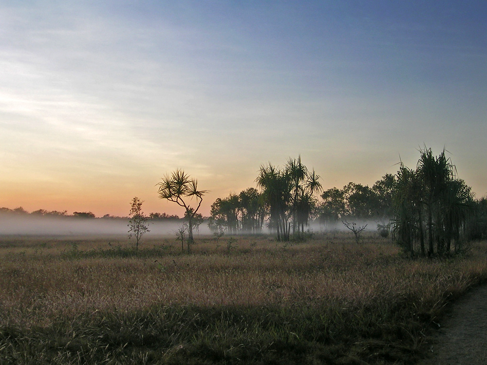 Kakadu´s fog
