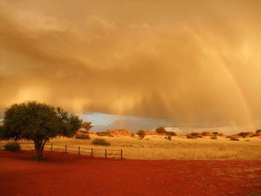 Kalahari Rain 1