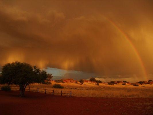 Kalahari Rain 2