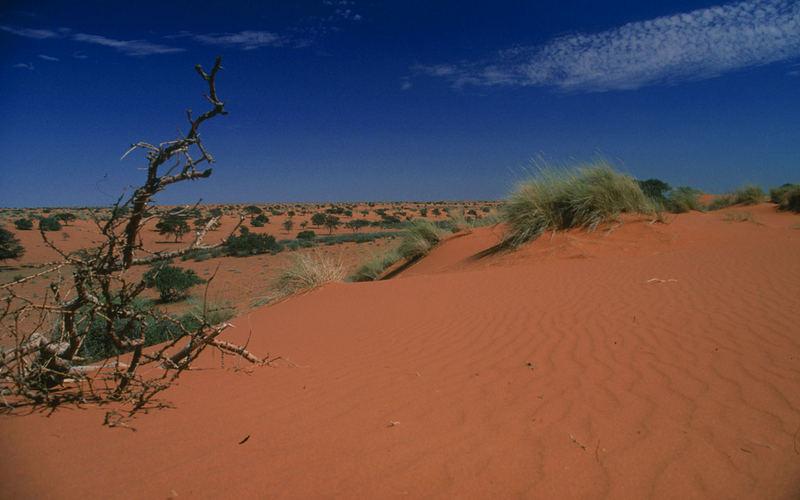 Kalahari - Sandkasten für Liebhaber!