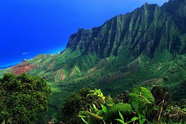 Kalalalau Valley Lookout, Kauai- Hawaii