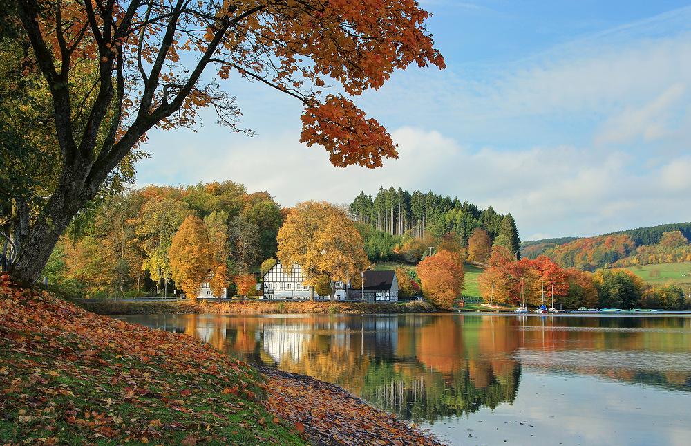 Kalberschnacke im Herbst. (2)
