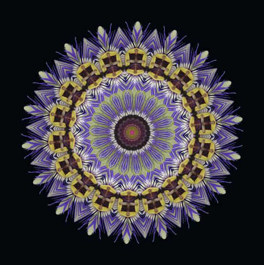 Kaleidoskop6