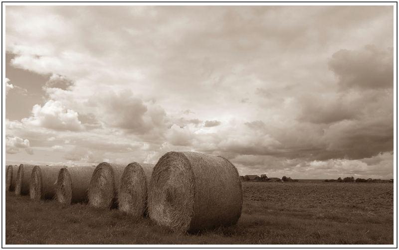 Kalendarischer Herbstanfang ist übermorgen......