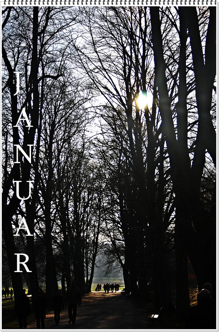 Kalenderblatt für den Januar