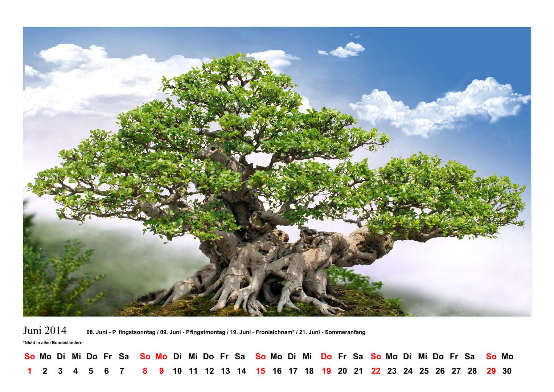 Kalenderblatt_Juni 2014