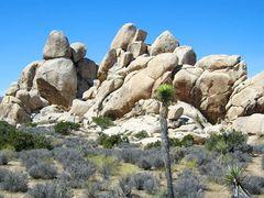 Kaliforniens Wüste...