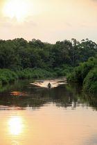 Kalimantan - Sonnenuntergang auf dem Sekonyer River