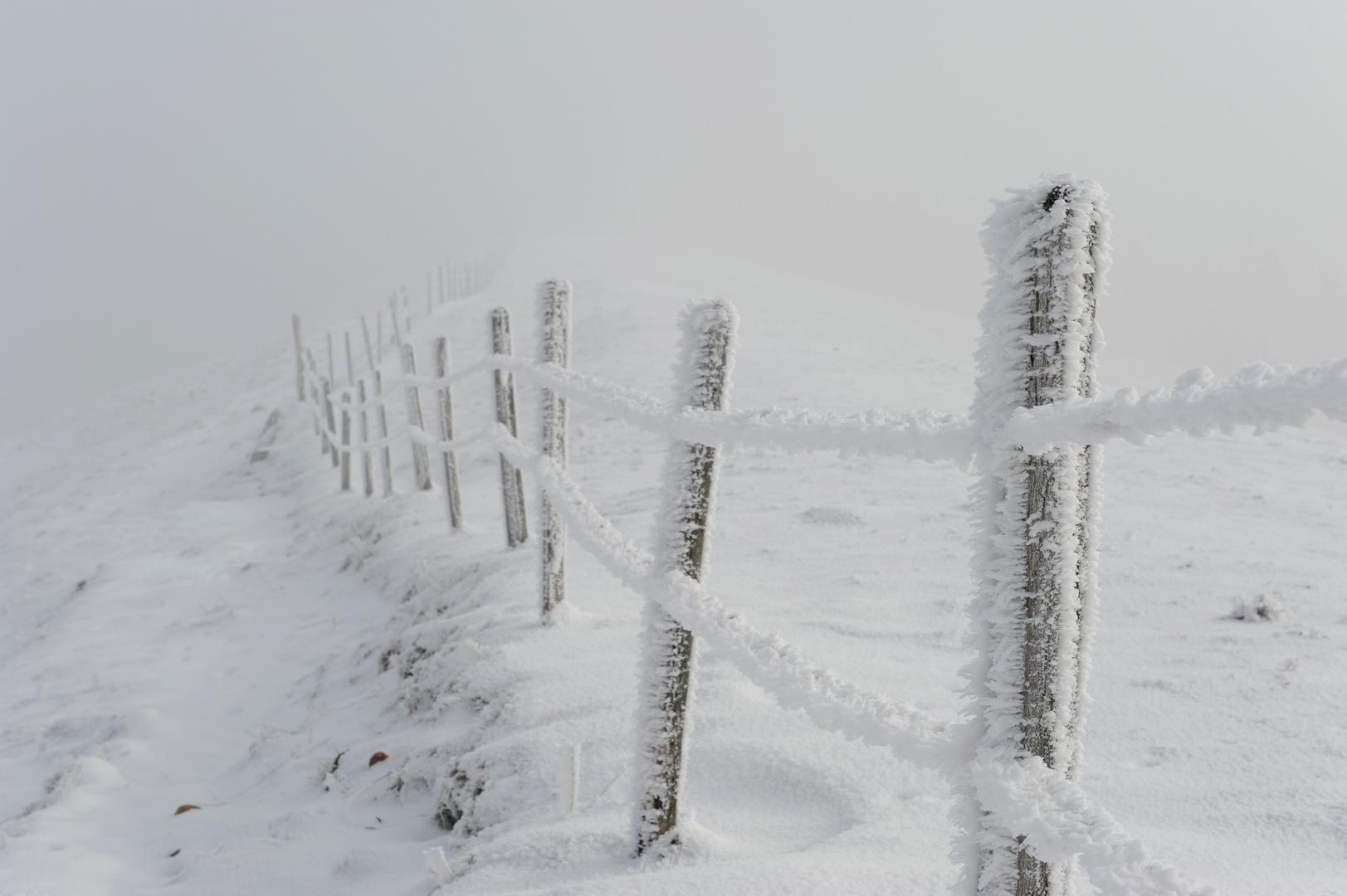Kalt, sehr kalt!