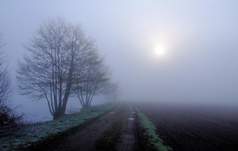 Kalt und voller Nebel war mein Morgen...