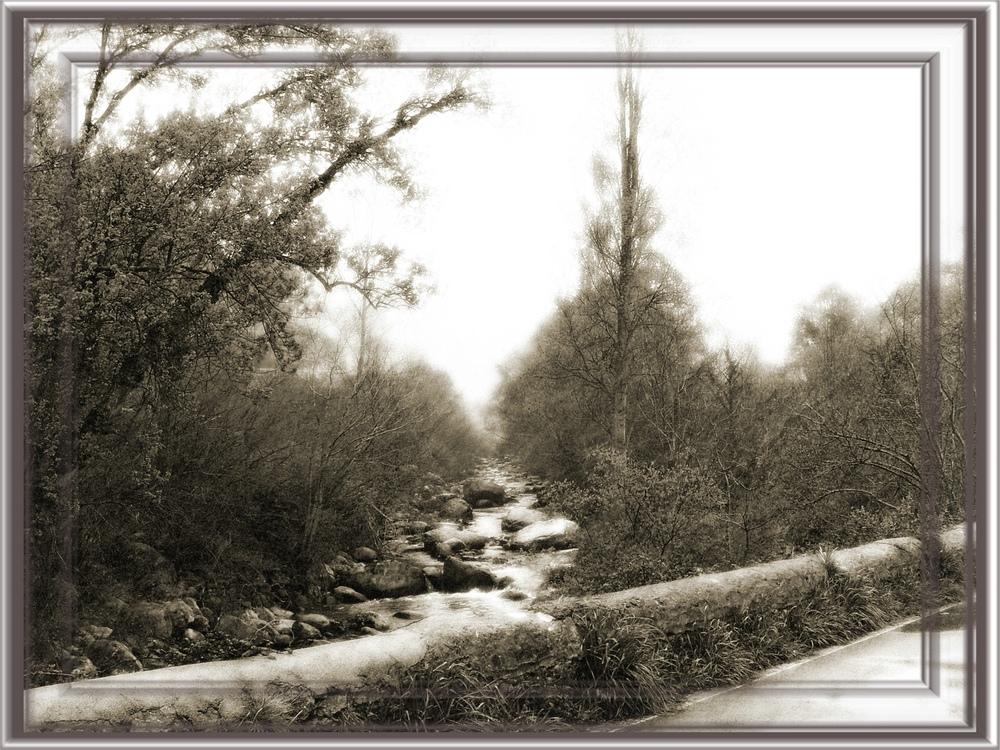 kalte Jahreszeit am Bach