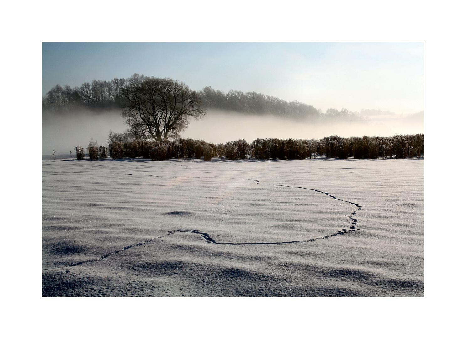 Kalte Nebel