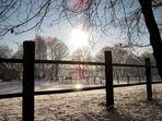 Kalte Schönheit