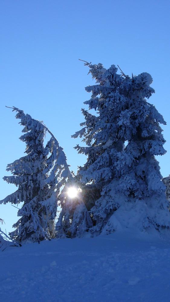 Kalten Zeiten für die Arbermandl