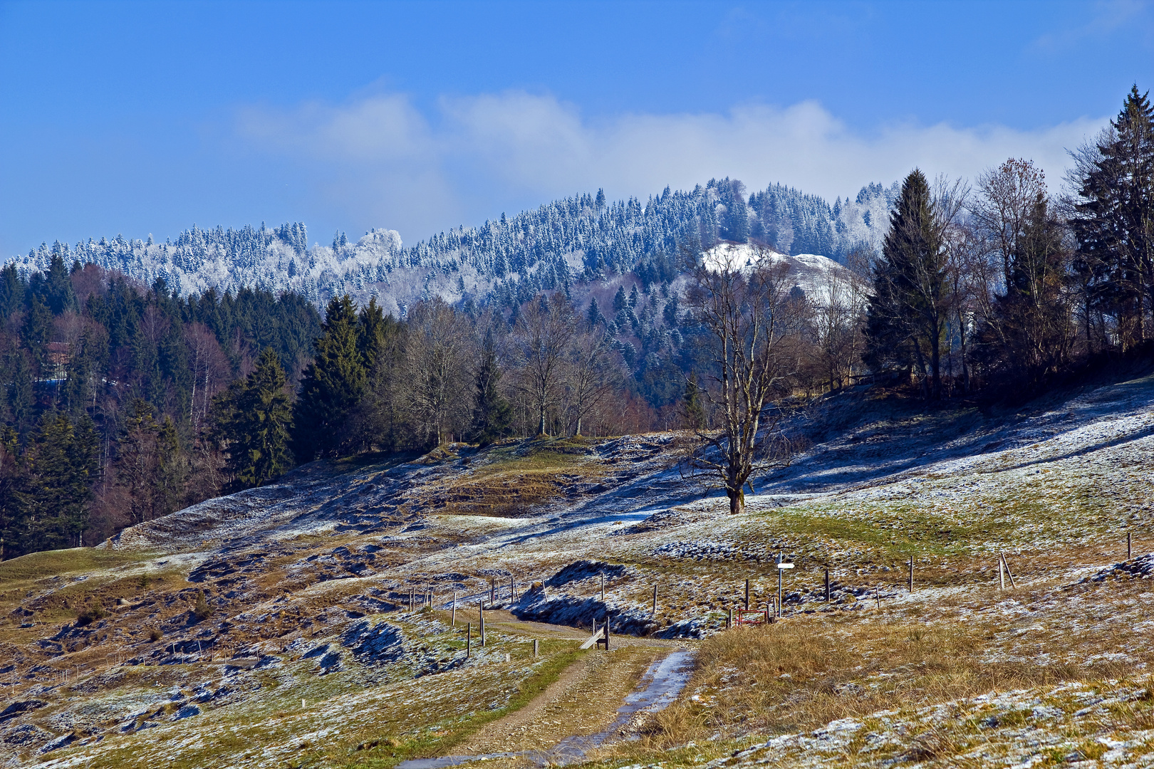 Kalter Frühlingsmorgen in den Allgäuer Bergen