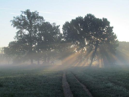 kalter Morgen mit warmer Sonne