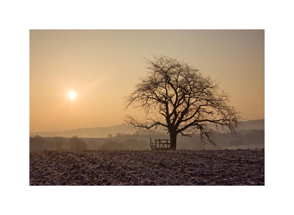 Kalter Morgen, warmes Licht