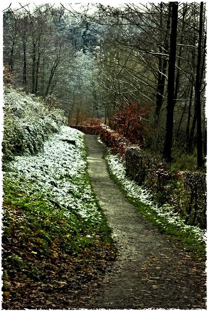 kalter Novembertag (III)....