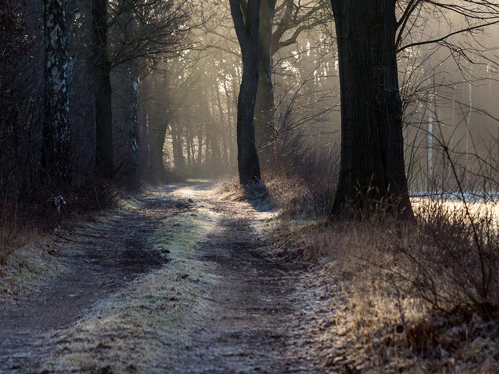 Kalter Weg
